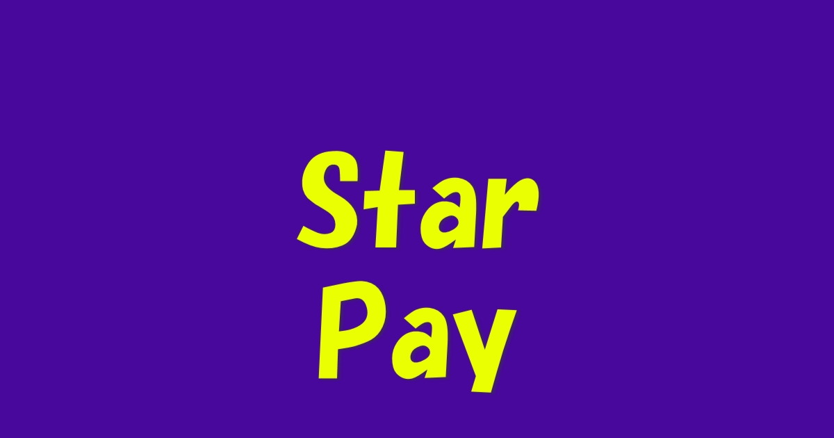 StarPay導入
